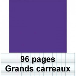 Cahier polypro A4 96P piqure seyes violet