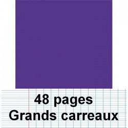 Cahier polypro 24 x 32 cm 48 pages piqure seyès violet